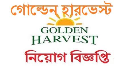 Golden Harvest Job Circular 2021